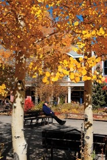 Autumn in the Blue River Plaza.  Photo by Mark Fox