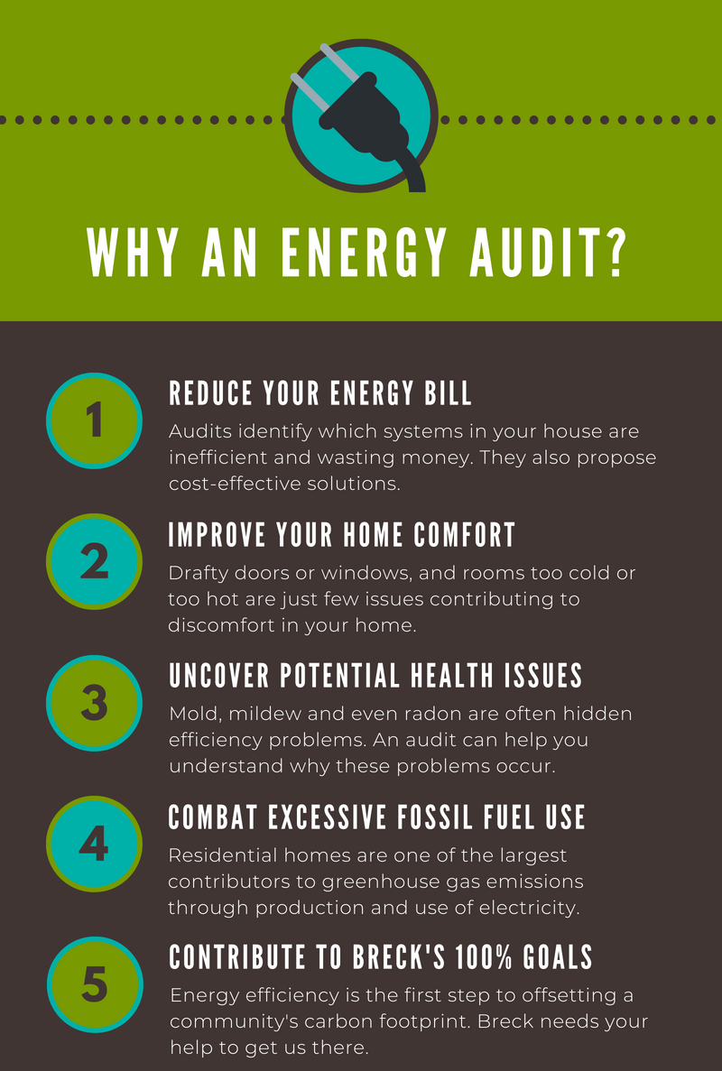 this infographic describes 5 reasons you should get an energy audit